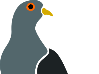 Pigeon English GCSE Revision Booklet