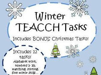Winter TEACCH tasks and activities - Autism and SEND Independent activities