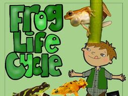 STEM - Be a Frog Detective - Life Cycle, Biomimicry, Inspiration for Ideas