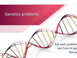 Genetics Problems 2 PowerPoint Activity by mrskirk72 - Teaching ...