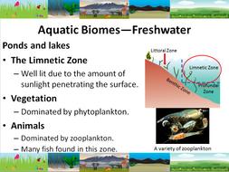 Aquatic-Biomes-PPT.pdf