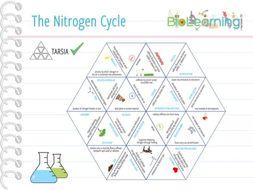 Nitrogen Cycle - Tarsia (KS4)