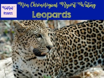 Leopards - Non Chronological Reports