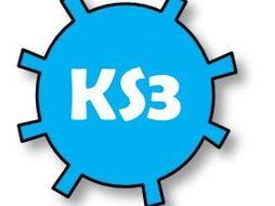 KS3 History: Symptoms of the Black Death