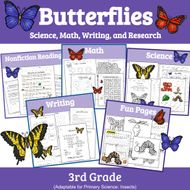 Butterflies: Unit Study of Butterflies (Insect Unit)