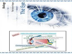 The EYE as a Sense Organ Sense ...IGSCE biology required worksheets for success