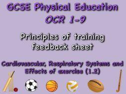 GCSE OCR PE (1.2) Physical Training  - Principles of training feedback sheet