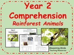 Rainforest Animals - SATs comprehension - Year 2