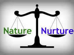 Nature vs nurture debate by jlcolbourne teaching resources - Nurture images download ...