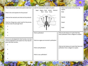 KS3 Photosynthesis and plant reproduction revision mat