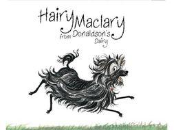 Hairy Maclary poetry resource pack- KS1- verbs, rhyme