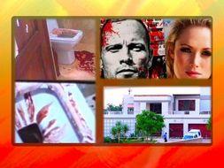 Oscar Pistorius Murder Trial Presentation + Quiz + Flashcards = 72 Slides