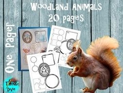 One Pager, Woodland Animals - US