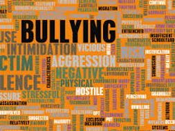 Stop The Bullying (K-12)