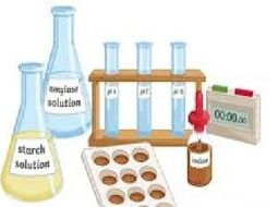 Effect of pH on Amylase Rate Investigation Worksheet (NEW AQA)