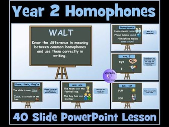 Year 2 Homophones Power Point Lesson