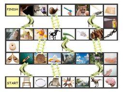 Phonics Vowel Teams ai-ay-oa-oe-ou-au Photo Chutes-Ladders Game