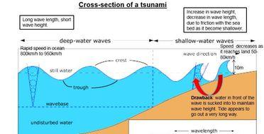 A Level; earthquake case study- the Sendai /Japanese ...