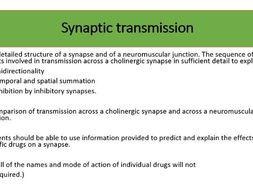 Synaptic transmission 3.6.2.2