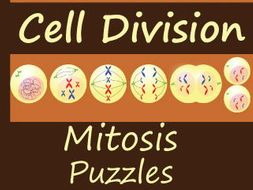 Mitosis Crossword and Word Search