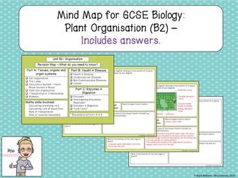 GCSE Biology Revision: Plant Organisation