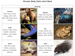 Monster Body Parts Word Bank - Coverings