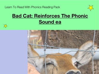 Bad Cat: Reinforces The Phonic Sound ea (Learn To Read With Phonics Pack)