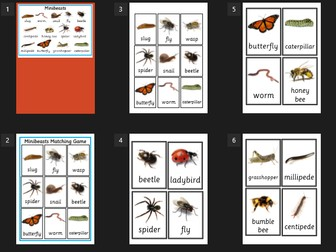 Minibeasts Poster/flash cards/matching game - EYFS/Understanding the world