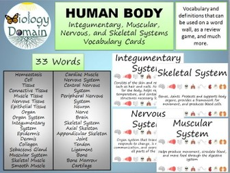 Human Body Word Wall Vocabulary Cards Part 3: Basic, Muscular, Skeletal, Nervous, and Integumentary