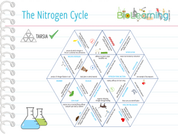 Nitrogen-cycle-Tarsia.pdf