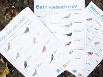 Big Schools' Birdwatch Survey Sheets