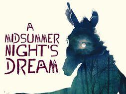 A Midsummer Night's Dream - Advanced Teaching + Drama + Literary Analysis BUNDLE