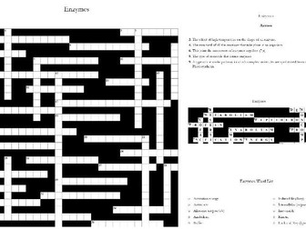 3. Enzymes Crossword: Text Documents and Interactive Webpages