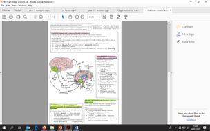the-brain-model-answers.pdf