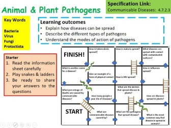 New OCR A Level Biology Plant & Animal Pathogens Lesson
