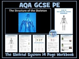AQA GCSE PE - The Skeletal System Workbook / Worksheets