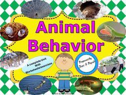 animal behavior unit with worksheets by ilaxippatel. Black Bedroom Furniture Sets. Home Design Ideas