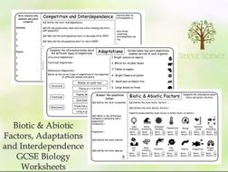 GCSE Biology - Biotic and Abiotic Factors, Adaptations and Interdependence Worksheet