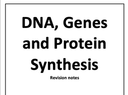 DNA, Genes and Protein Synthesis AQA A-Level Biology Notes