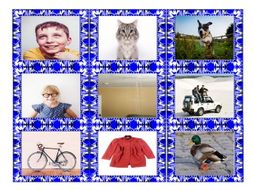 Phonics Consonant Letters b-c(k)-c(s)-d-g-j Photo Card Game