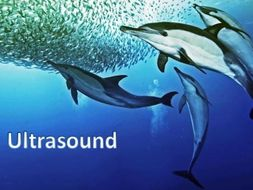 Ultrasound and its uses