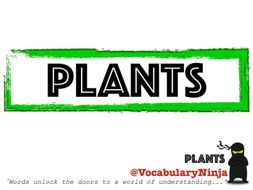 Plants Topic Vocabulary Pack
