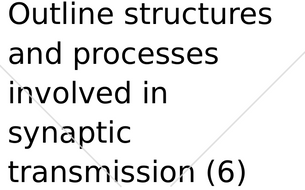 Outline the structures and processes involved in synaptic