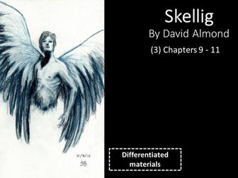 KS3: Skellig (3) Chapters 9 to 11