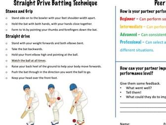 Cricket Peer Assessment sheet