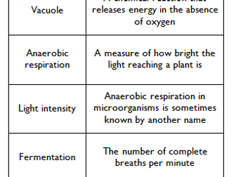 AQA Biology Unit 4 Bionergetics Loop Game