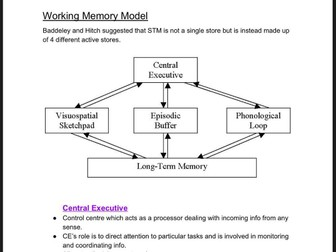 Working Memory Model Revision