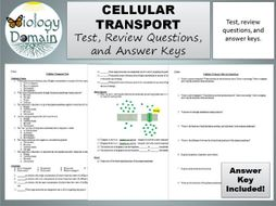 Cellular Transport Test  Review Questions  and Answer Keys by together with  furthermore Cell Memne Coloring Worksheet Answer Key 182500 Cellular together with Cell Transport Review Worksheet Answers Awesome Cell Transport in addition Chapter 7 Cell Structure And Function Worksheet Answer Key further  also  as well  in addition Pive And Active Transport Worksheet Cleverwraps  Cellular further Chapter 8 Cellular Transport and the Cell Cycle also Cellular Transport Worksheets Answer Key additionally Cell Memne   Tonicity Worksheet furthermore Cellular Transport Worksheet   Homedressage besides Cell Transport Matching Worksheet for Review or essment   TpT likewise Cell Memne Structure Worksheet Answers Inside A Cell Worksheet furthermore Download Aen Cell Membrane And Transport Worksheet Aaa Format. on cellular transport worksheet answer key