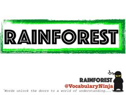 Rainforests Topic Vocabulary Pack