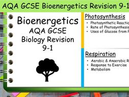 B4 Bioenergetics AQA GCSE Science Biology Revision 9-1